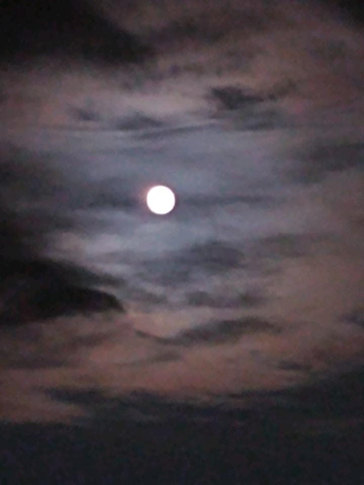 Our first week in Rehoboth ended with a beautiful, full moon, 9-19.