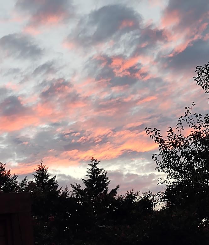 A beautiful August sunset, 8-21.