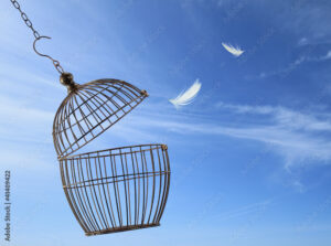 An empty, open birdcage with feathers in the air+.